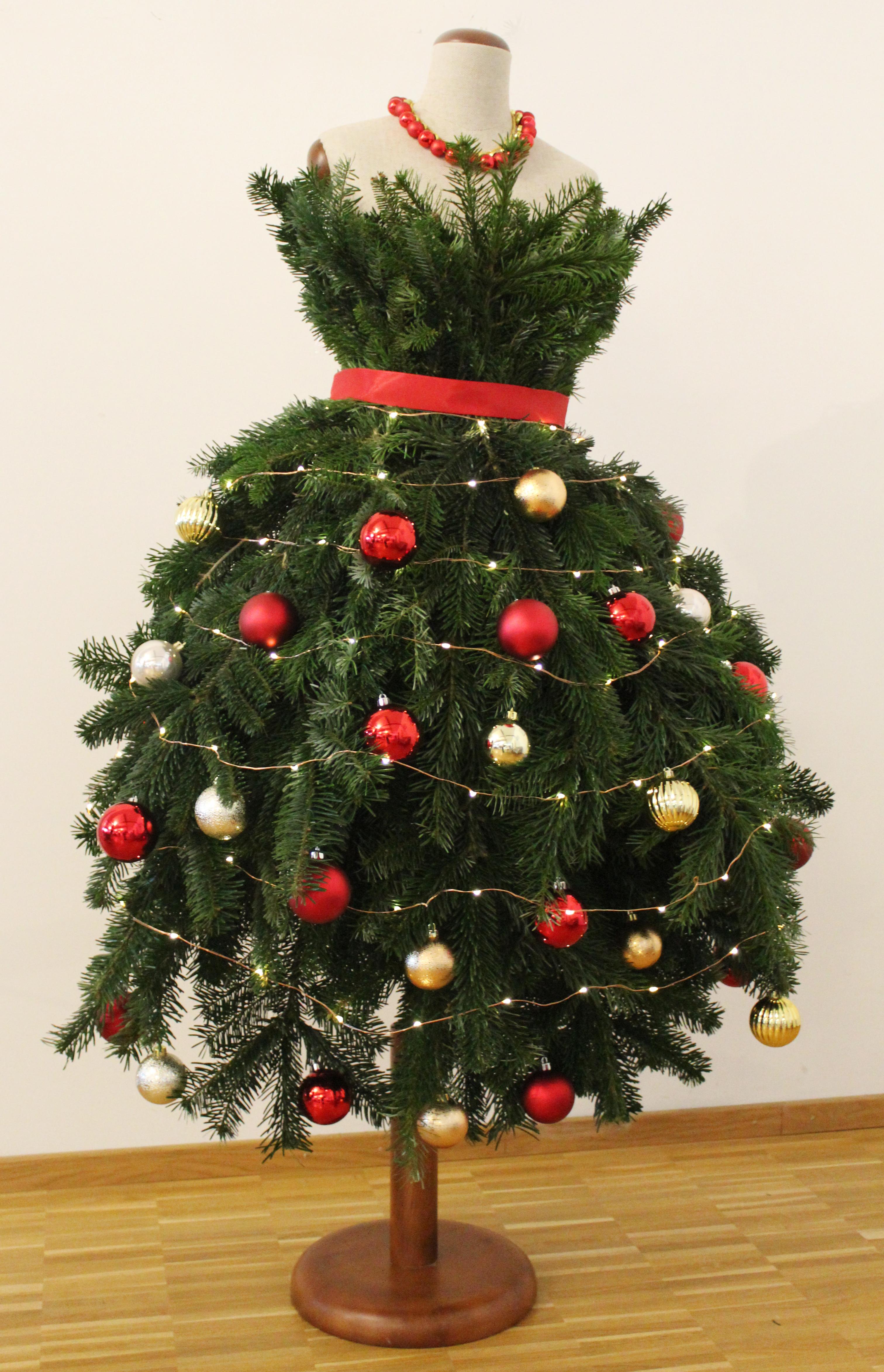 Fräulein Tannenbaum Dieses Jahr Gibts Die Geschenke Unter Der