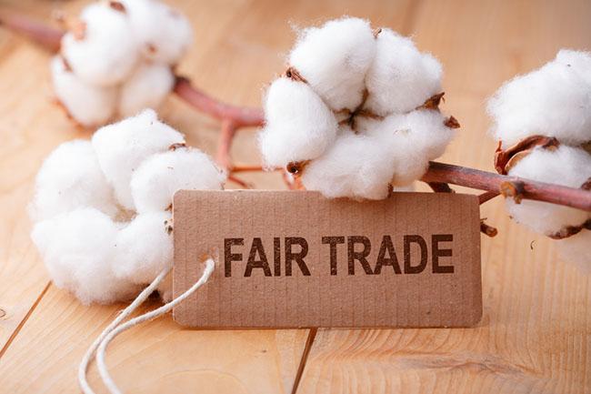 69fe935ec059c4 Bio-Baumwolle  Auf was du achten solltest!